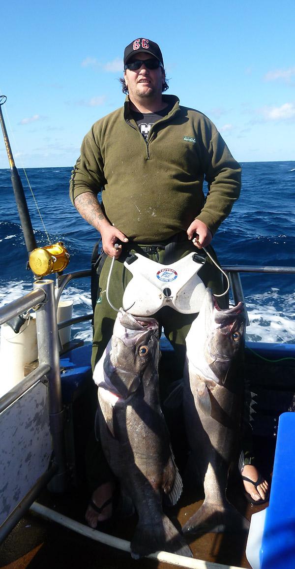 hapuka fish